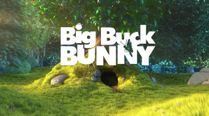 bigBuck